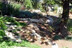 גינה בצל אלונים - טראסות נבנות תוך שמירה על האלונים