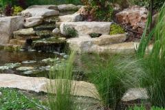 גינה יפה ללא דשא - ברינת נוי בגינה קטנה