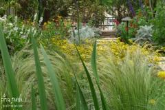 גינה יפה ללא דשא - זהוב-וחלומי