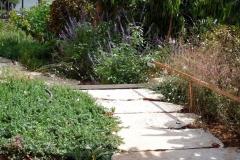 שביל-בגינה-מלוחות-אבן-גדולים