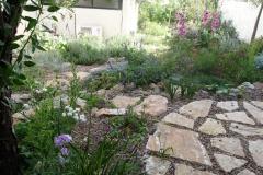 עיצוב גינת כרמל ישראלית - באביב-מבט-מרחבה-עליונה-על-הגינה-לגינה