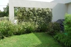 עיצוב גינה מיוחדת - קיר דקורטיבי ומטפס , דשא