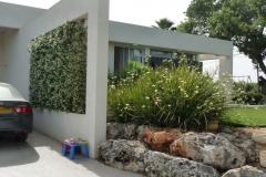 עיצוב גינה מיוחדת - מסלעה, קיר דקורטיבי ומטפס