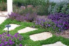 עיצוב גינה בזכרון יעקב - שביל לגינה אחורית