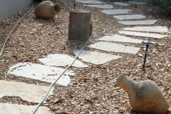 עיצוב גינה בזכרון יעקב -  שביל שבבי אקליפטוס  בצד המבנה