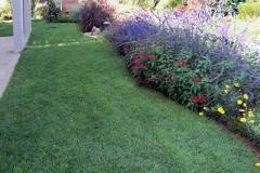 גינה קטנה בשרון - מדשאה יפה