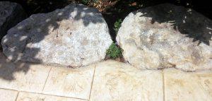 גינה יפה בשרון. סלעים שקועים בבומנייט