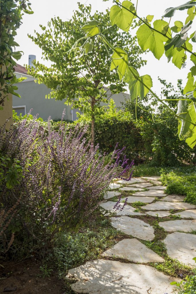 רחבת אבן בגינה