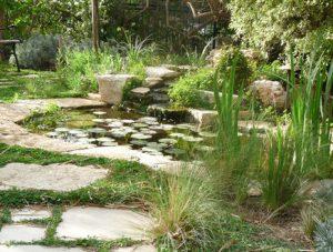 בריכת נוי בגינה